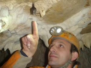 Grotte Murée du 01.11.2013 (10)