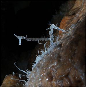 Grotte de la Toussaint Guy (2)